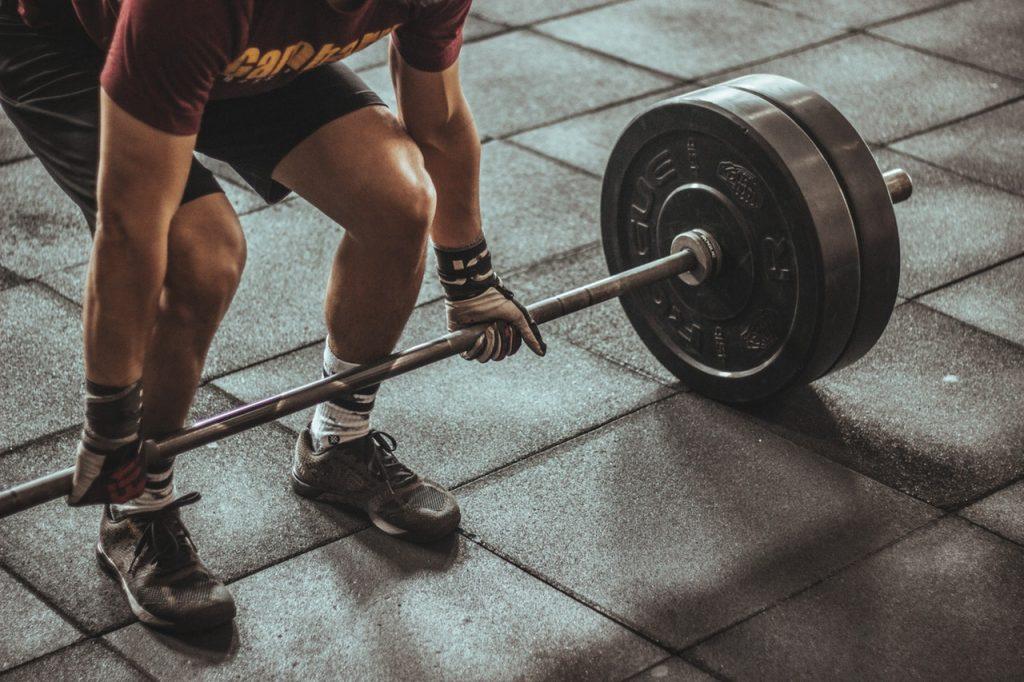 Construção muscular